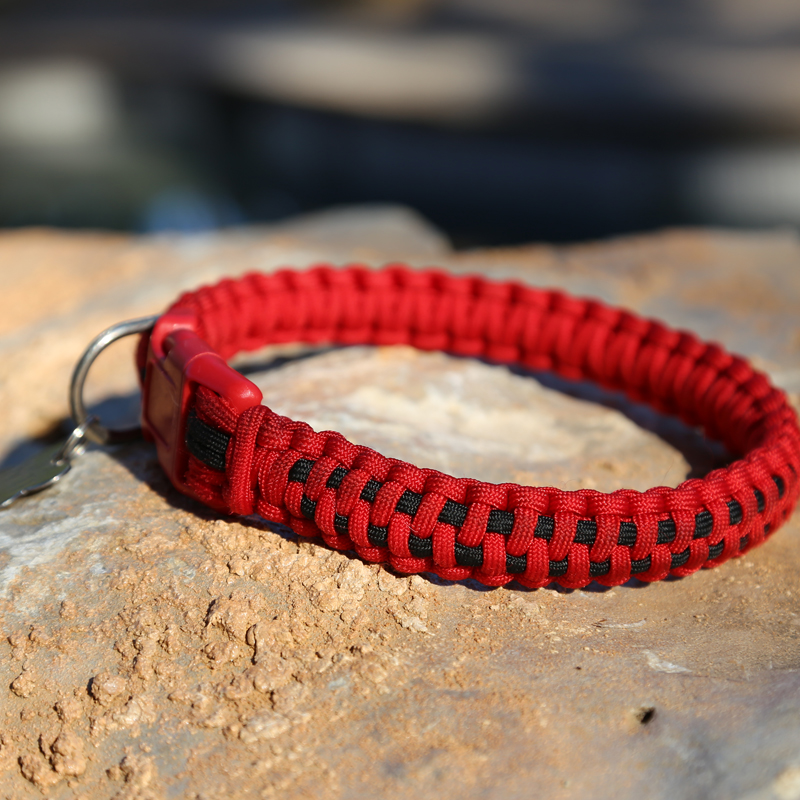 Knots 4 Kritters Checkerboard Dog Collar
